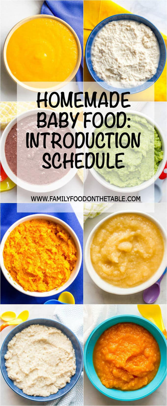 Homemade Baby Food Introducing Solids Schedule Family
