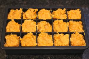 freezer sweet potato chicken
