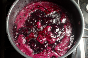 Blueberry sauce | FamilyFoodontheTable.com