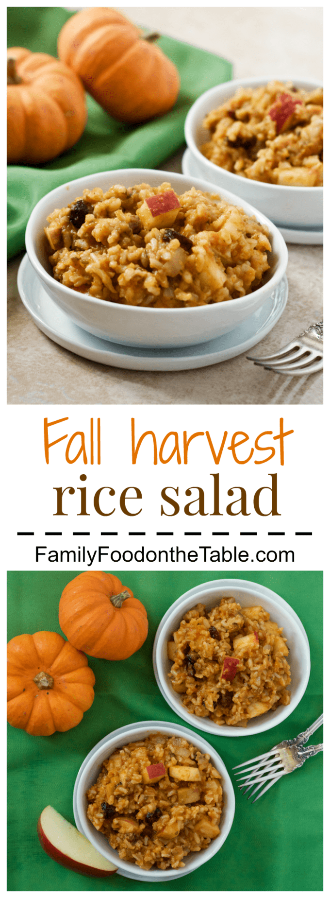 Fall harvest brown rice salad with pumpkin, apples, raisins and nuts! | FamilyFoodontheTable.com