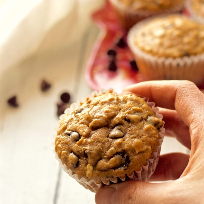 Healthy chocolate chip muffins -- the whole family will love these! | FamilyFoodontheTable.com