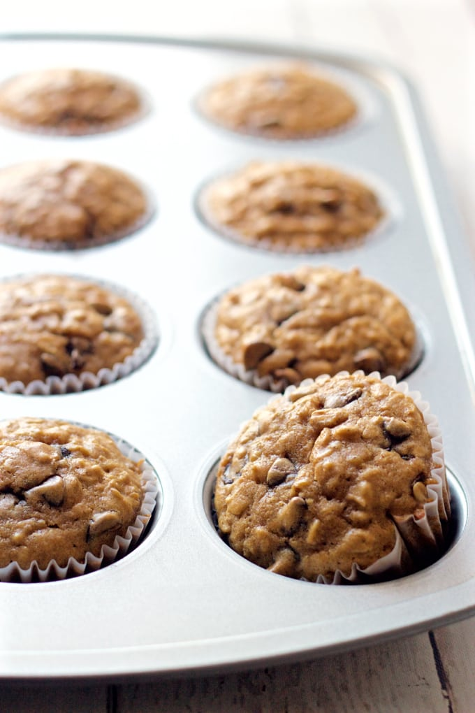 Healthy chocolate chip muffins -- made with wheat flour, oats and just a tiny bit of butter for a fun breakfast or easy afternoon snack! | FamilyFoodontheTable.com