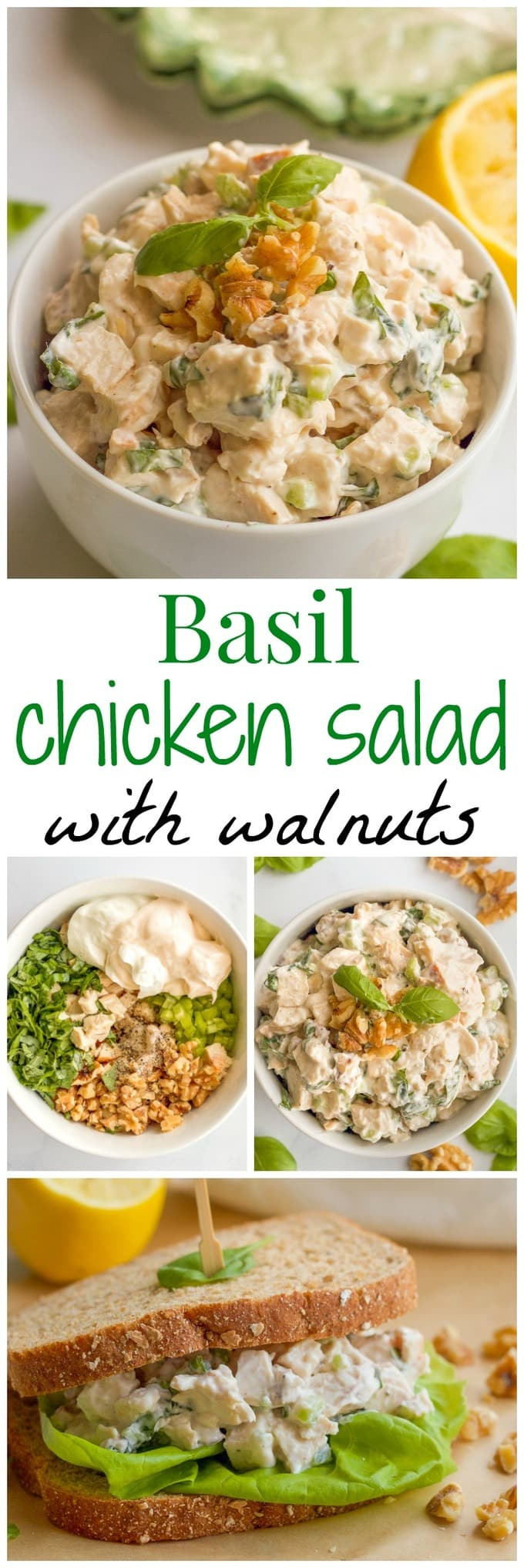 A creamy but healthy basil chicken salad with fresh basil and chopped walnuts - great as a sandwich, wrap or lettuce wrap, or paired with crackers! | www.familyfoodonthetable.com