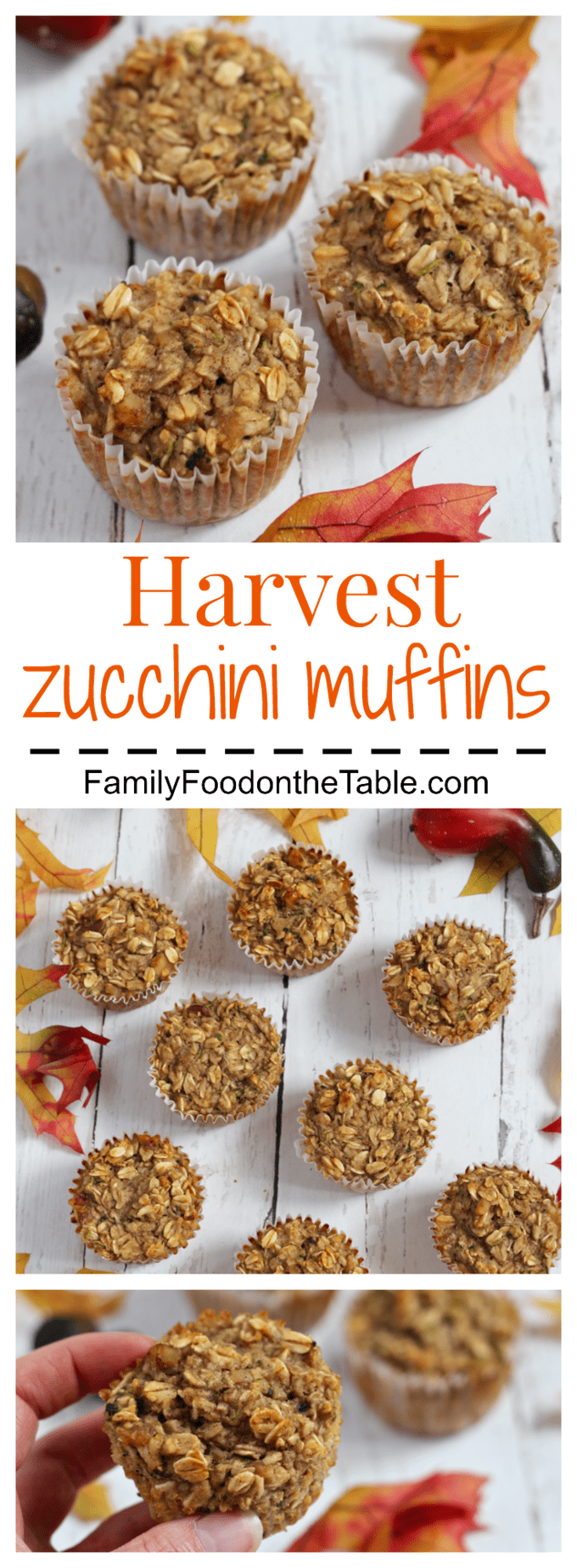 Harvest zucchini muffins are full of goodness with oats, banana, applesauce and zucchini - great for kids breakfast or school lunch!
