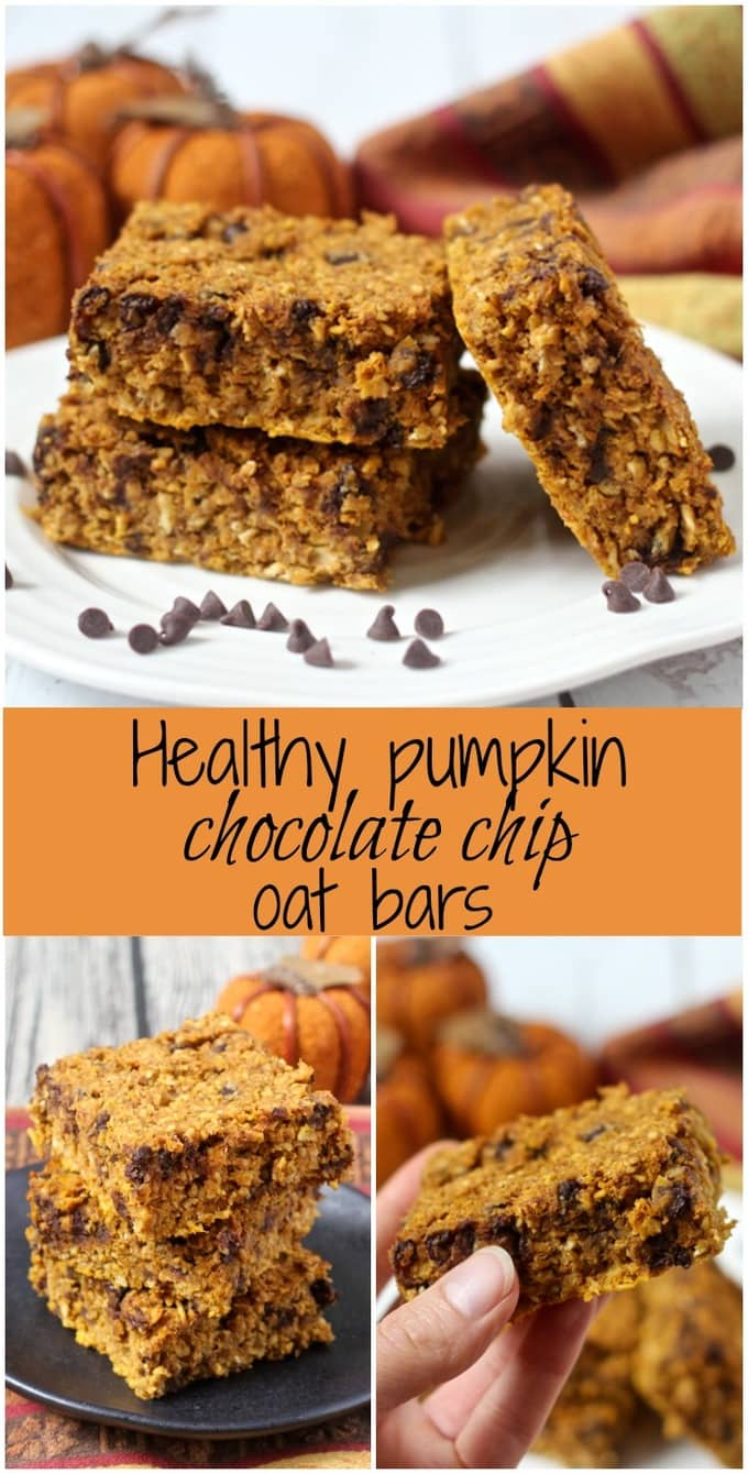 Healthy pumpkin chocolate chip oat bars are an easy one-bowl recipe that make a great afternoon snack or dessert! (Gluten-free and vegan options available.)