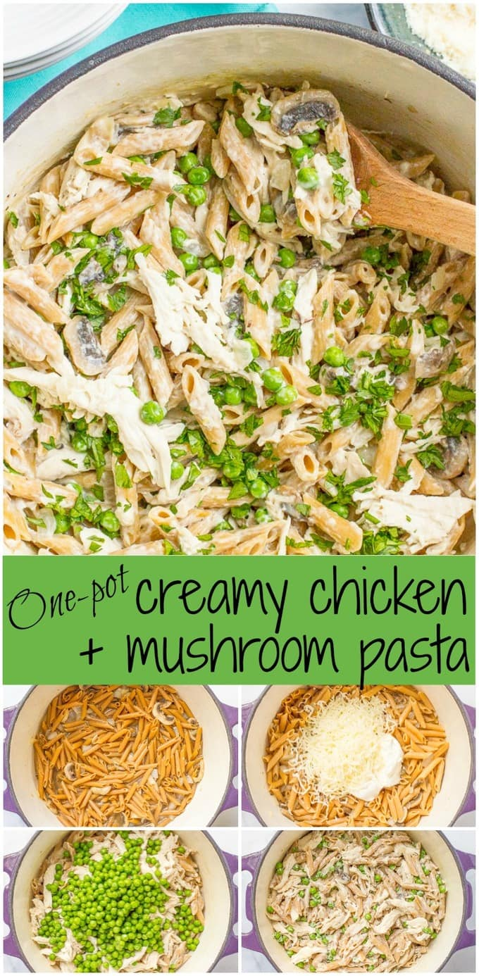 A photo collage of a cheesy creamy chicken and mushroom pasta
