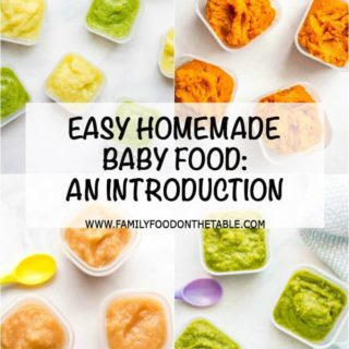 An introduction to homemade baby food -- Check out these tips for how to get started making homemade baby food! | www.familyfoodonthetable.com