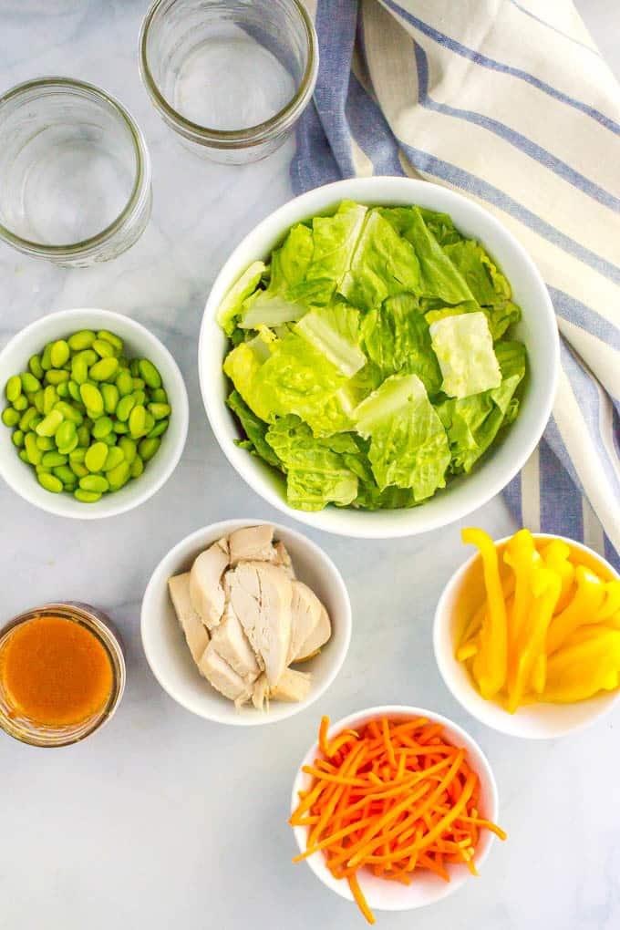 Asian chicken mason jar salad ingredients