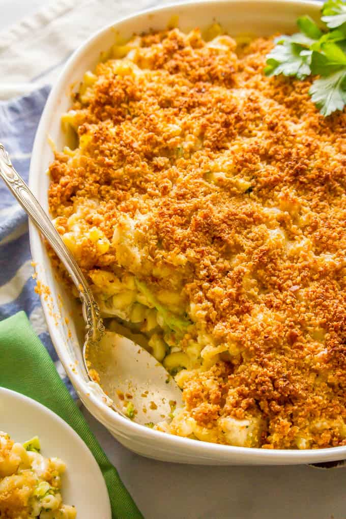 Healthy chicken broccoli mac and cheese is a family favorite recipe that's loaded with creamy macaroni, tender chicken, broccoli florets and an irresistible cheesy, buttery breadcrumb topping. Everyone will want seconds! #macandcheese #healthypastarecipes #familydinner | www.familyfoodonthetable.com