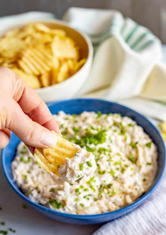 Caramelized onion dip being scooped up onto a chip