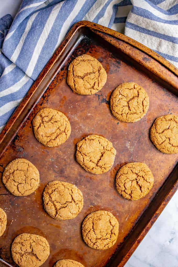 Old fashioned soft molasses cookies on a baking tray after being baked