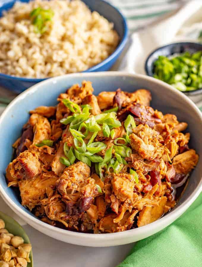 Slow Cooker Honey Garlic Chicken Family Food On The Table