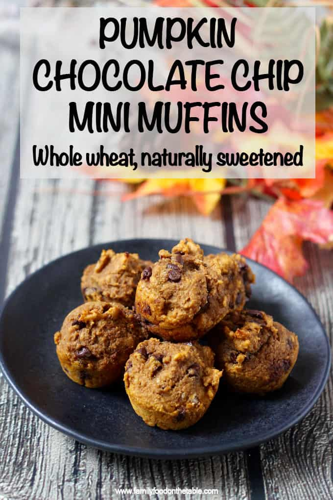 These addictive pumpkin chocolate chip mini muffins are 100% whole wheat and naturally sweetened with no oil or butter needed. They are great for a delicious, healthy snack! #pumpkin #chocolate #muffins #kidsfood