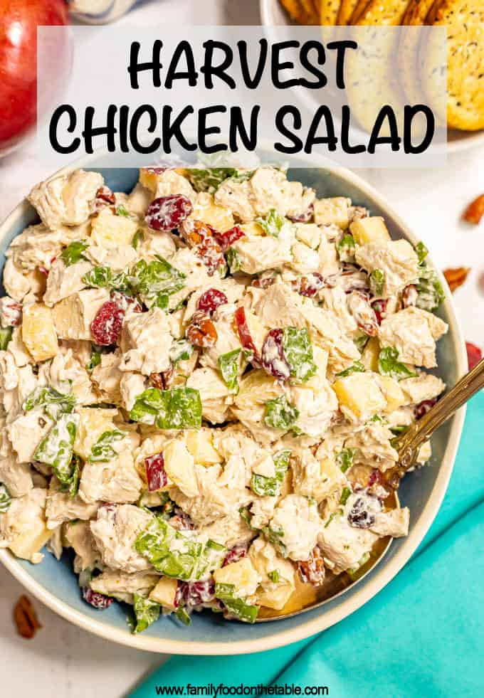 Harvest chicken salad with pecans, apples and dried cranberries is a delicious, crunchy, fresh fall twist on the classic! It's great served as a sandwich, wrap or with crackers or greens. #chickensalad #lunchrecipes #fallrecipes #lunchtime #chickenrecipes