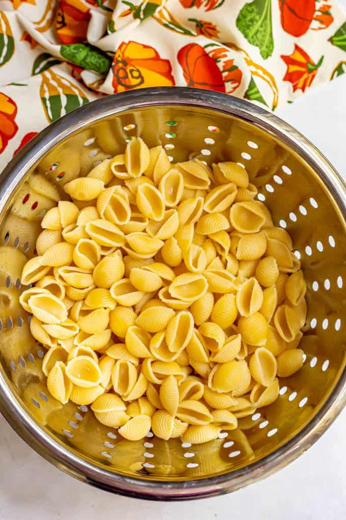 Cooked pasta shells in a colander