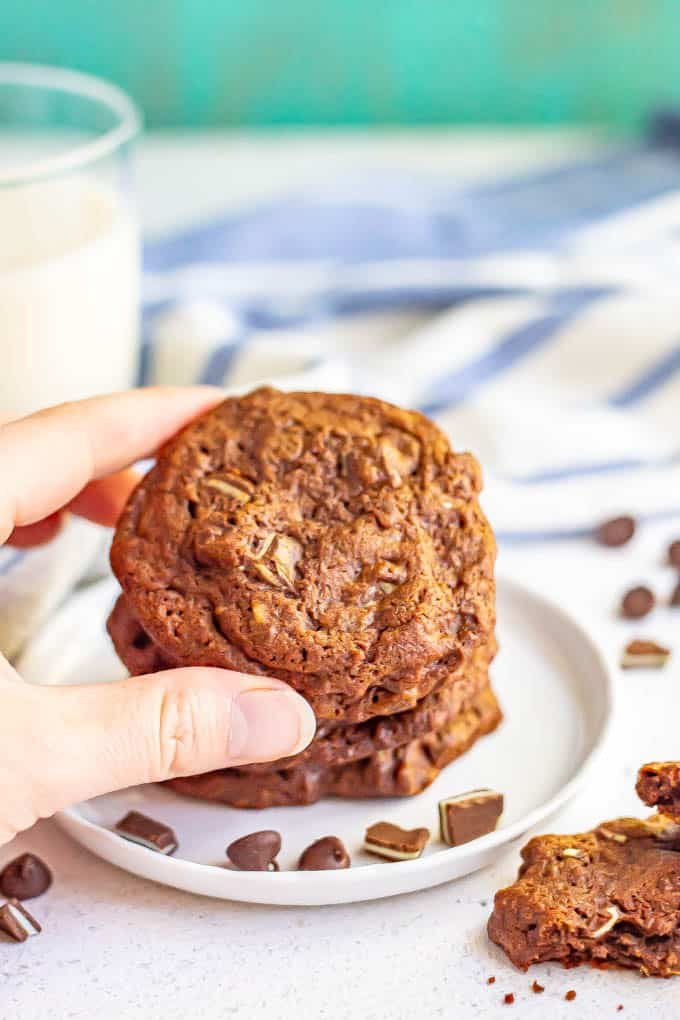 A hand holding a chocolate mint cookie with a plate of cookies in the background