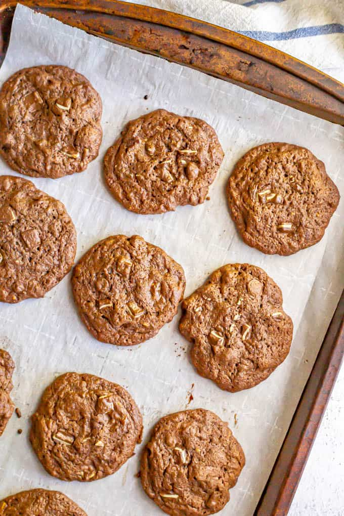 Baked chocolate cookies on a sheet pan with parchment paper