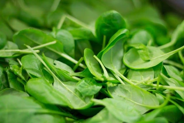 Close up of a pile of fresh baby spinach leaves