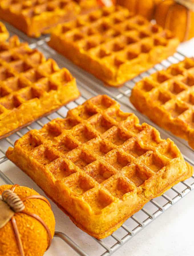 Large square pumpkin waffles on a cooling rack with decorative pumpkins nearby