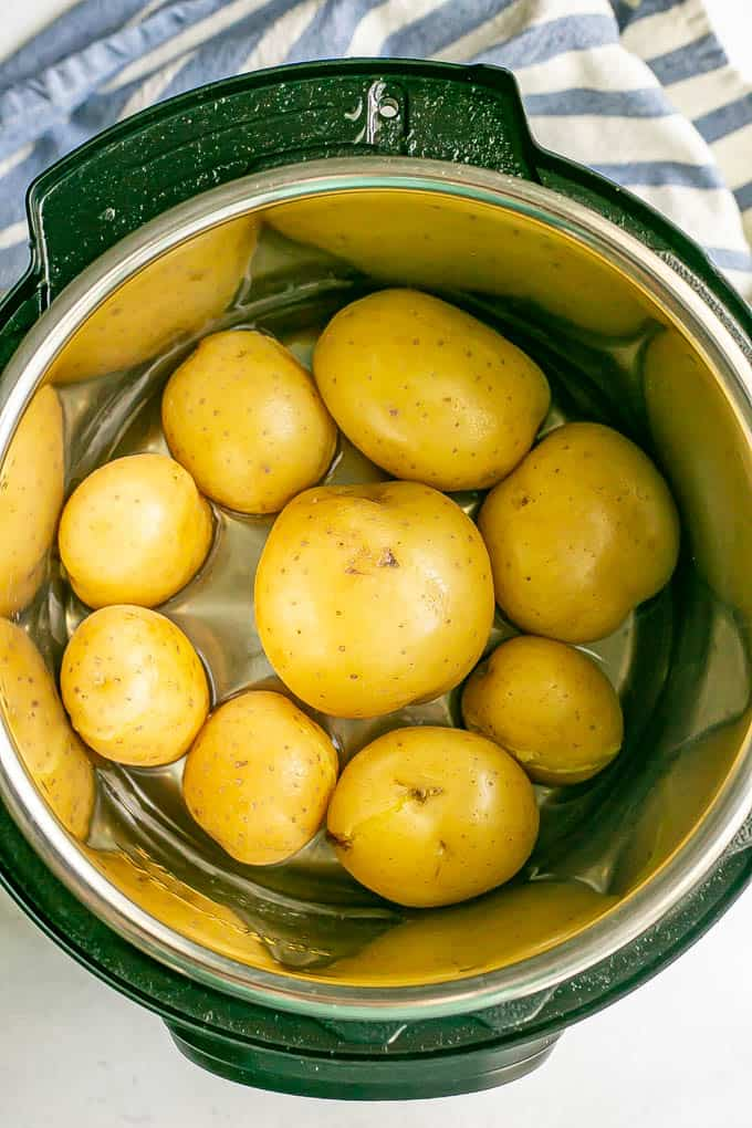 Yukon gold potatoes in an Instant Pot before being cooked