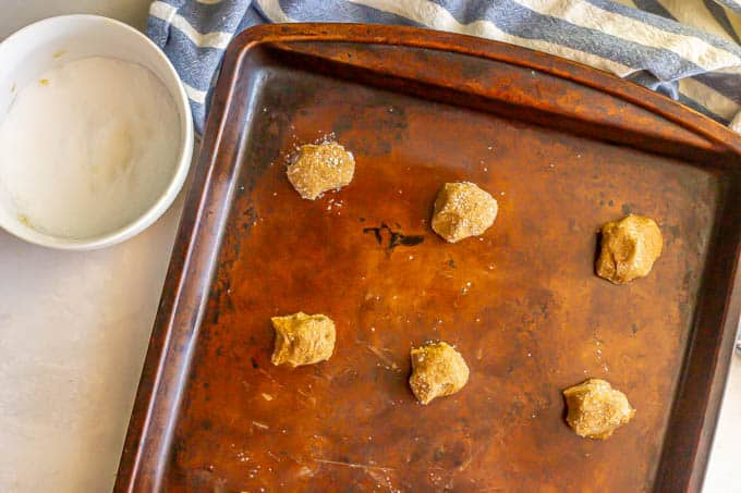 Small cookies rolled in sugar and placed on a baking sheet before baking