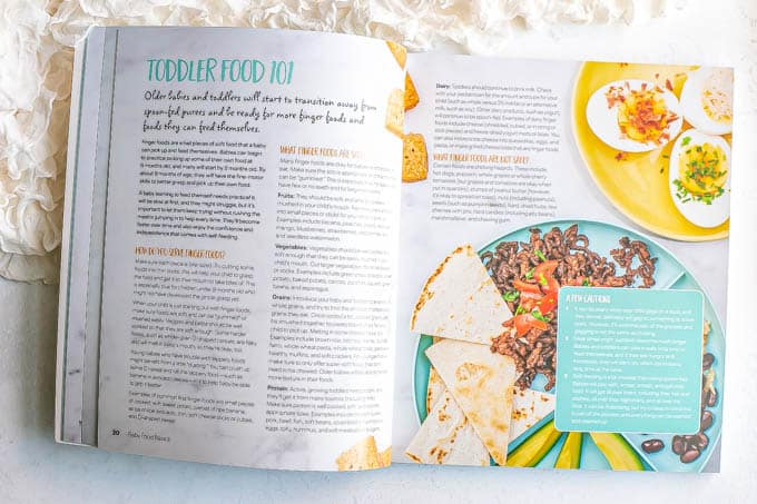 Toddler food introduction section in a baby food cookbook
