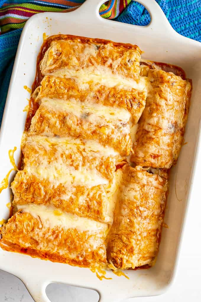 Cheesy chicken enchiladas in a white baking dish after being baked