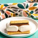 Microwave S'mores