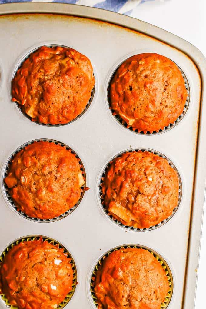 Close up of baked apple muffins in a muffin tin